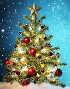 christmas-tree-year